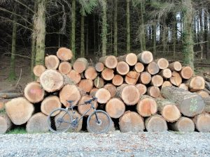 Gwydyr Forest. MB orienteering. Προσανατολισμός με ποδήλατο βουνού.